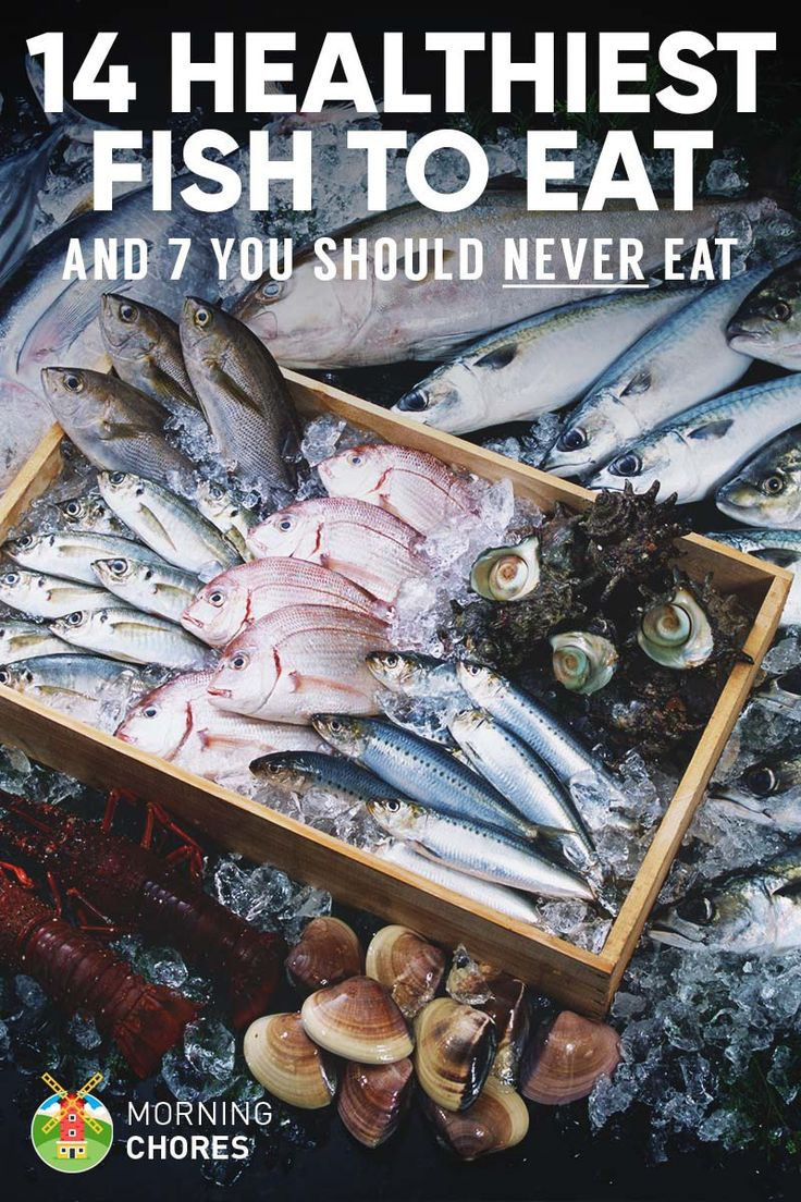 14 healthiest  best fish to eat and 7 to absolutely steer clear of  healthy meats fish