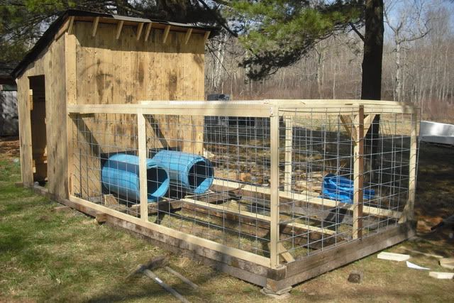 I used the 55 gal drums to make a tunnel into the main dog for Barrel dog house designs