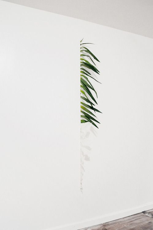 Ryan Estep.Dirt (palm fronds and cast skin).2011.