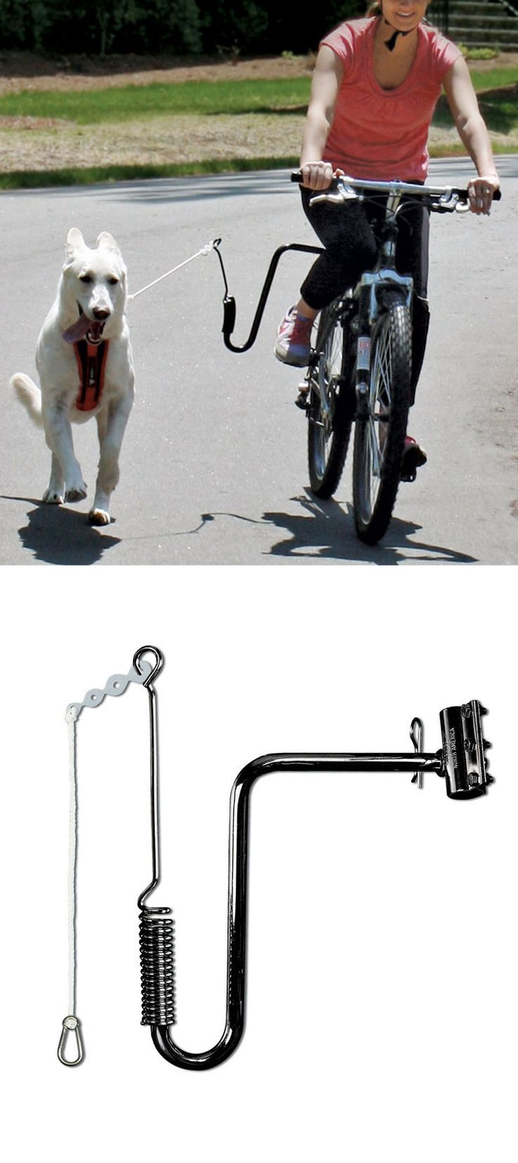 Dog Bike Excerciser - features an arm with a steel spring that absorbs up to 90% of the force of your pooch's tugs. You keep your balance on the bike while protecting him from traffic, pedals, and wheels. It even has a safety release that frees him instantly should he get caught around a tree or hydrant.