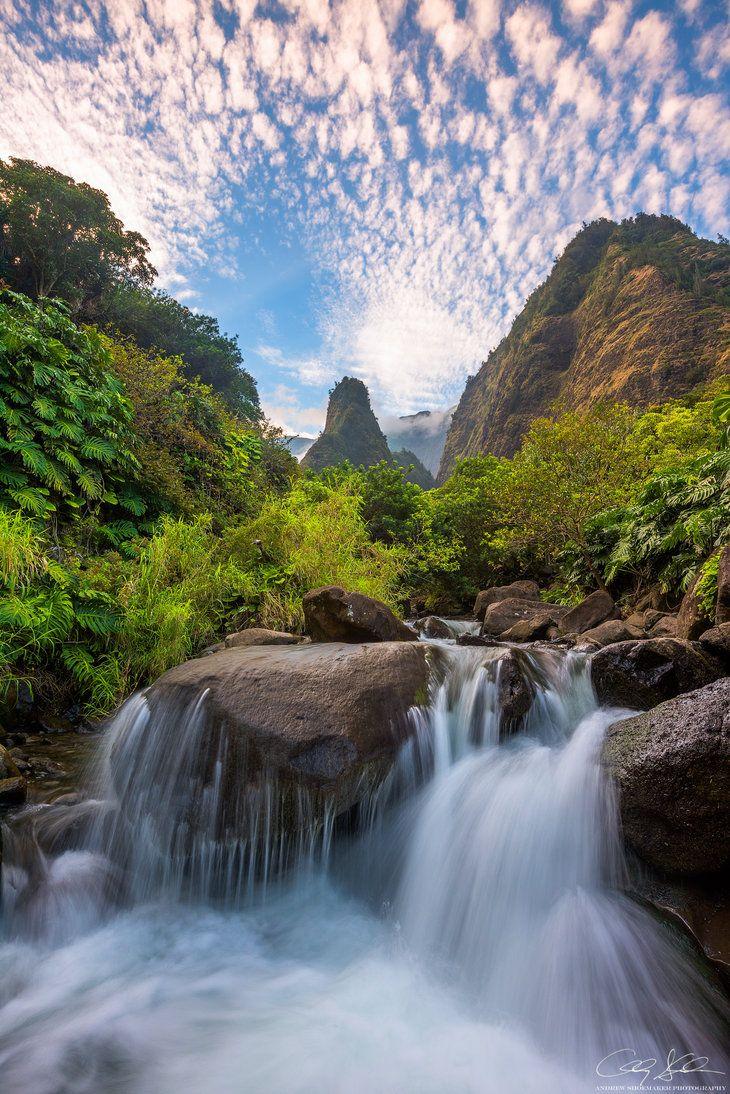 イアオ渓谷の豊かな自然の中をトレッキング。マウイ島旅行の観光アイデアまとめ。