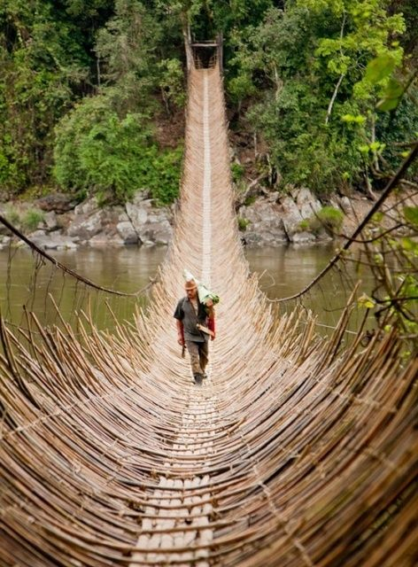Cane bridge in the village Kabua, Republic Of The Congo.