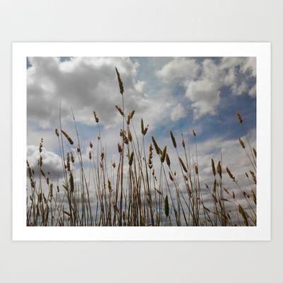Wheat and Clouds Art Print by Sheridan van Aken - $20.80
