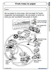 CAPS-Grade3-Lifeskills-Term4-PLANTS-Food That PLants Give Us