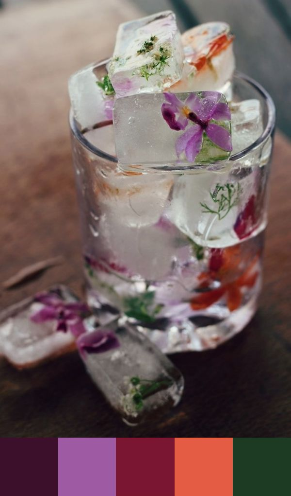 Pretty! edible flowers in ice cubes.