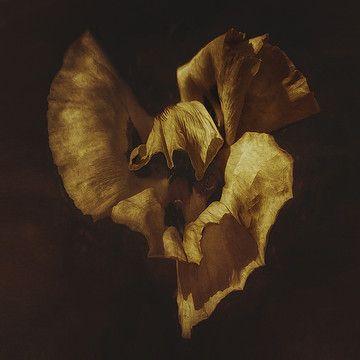 Lars Van de Goor - Artwork Collections