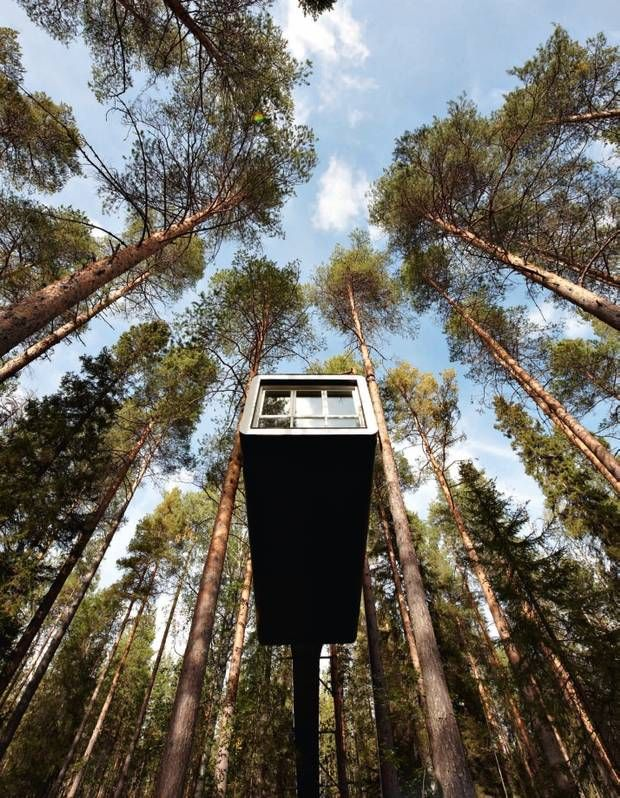 Best Treehouse Asignment Images On Pinterest Modern Tree - Contemporary banyon treehouse california