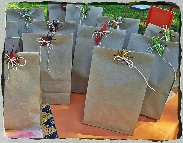Goodies bags for all the friends, they liked the bugs to take home**