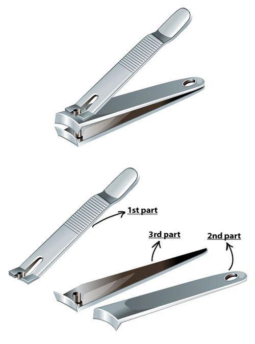 How to Create a Nail Cutter using Adobe Illustrator