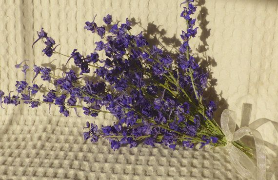 Dried Larkspur bundle  dried flowers for by PetalConfetti on Etsy