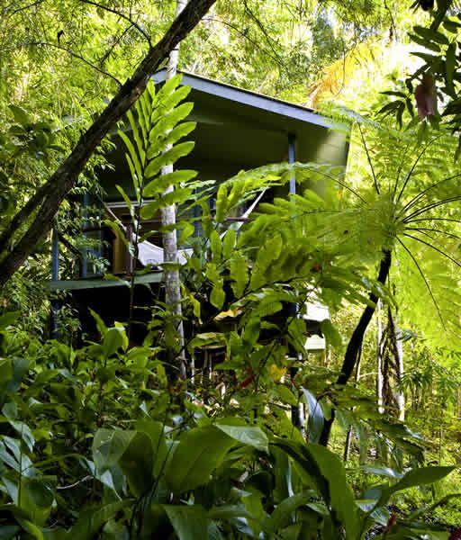 Silky Oaks Lodge, Mossman Gorge, Daintree Rainforest, Australia