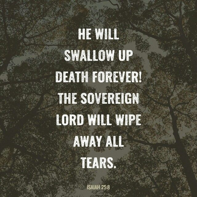 He will swallow up death forever; and the Lord God will wipe away tears from all faces, and the reproach of his people he will take away from all the earth, for the Lord has spoken.  ISA 25:8 ESV  http://bible.com/59/isa.25.8.ESV