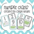 This download contains Chevron Number Posters 1-20 with numbers, number words and ten frames.    Enjoy :)...