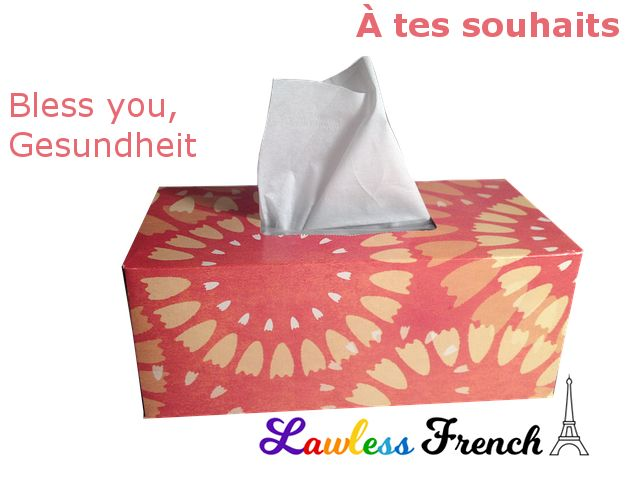 À tes souhaits - https://www.lawlessfrench.com/expressions/a-tes-souhaits/