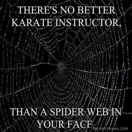 Karate instructors...