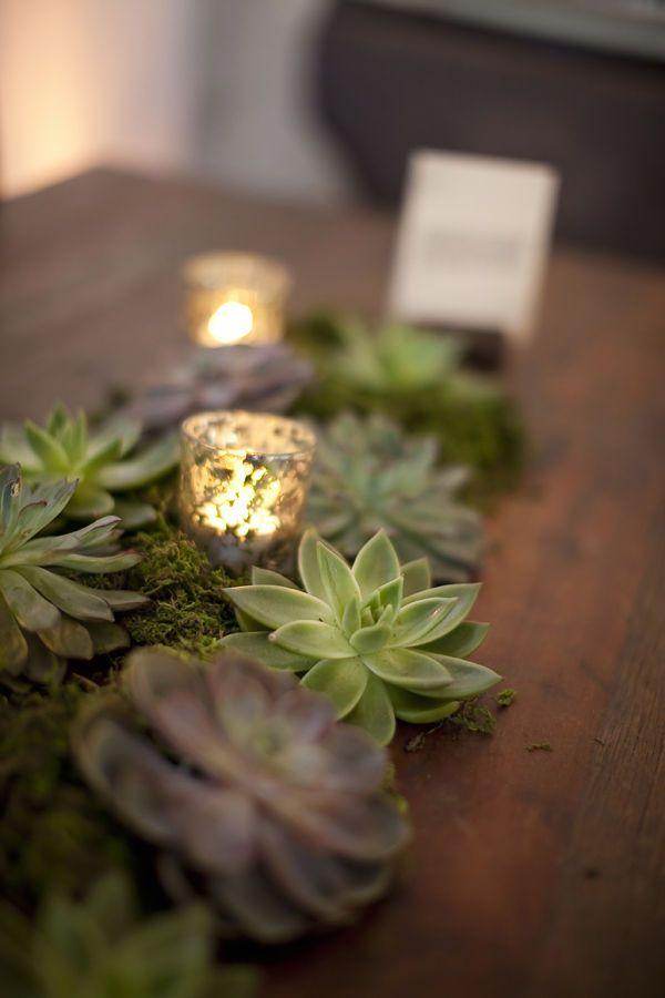 Ideas about succulent centerpieces on pinterest