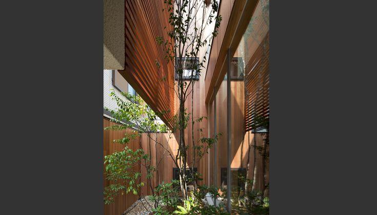 苦楽園の家 - WORKS|株式会社 一級建築士事務所 設計組織 DNA|実績ある建築家とつくる戸建住宅 - 大阪・京都・兵庫