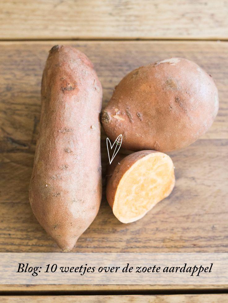 Zoete aardappels. We gebruiken ze vaak in onze recepten, vooral omdat ze zo veelzijdig zijn, maar ook vanwege alle goede eigenschappen.