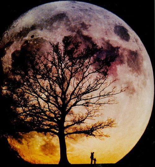 Every time I look at the pic of the moon it looks captivating.. Amazing!!!