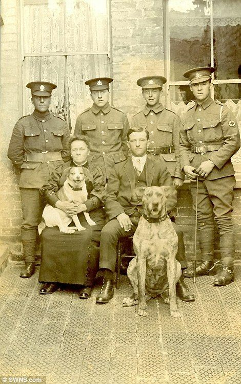 Dogs confirmed their place as man's best and loyal friend during the war and brought soldiers together with civilians, who pose proudly with the animals in August 1915 alongside four soldiers - most of whom were from the Wiltshire Regiment