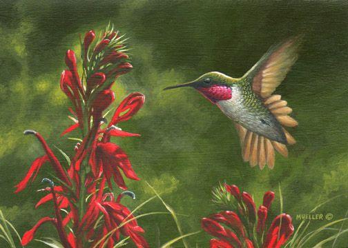 Mark Mueller Wildlife Art bird painting - hummingbird