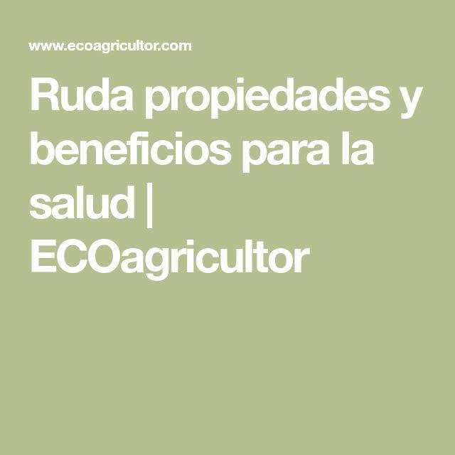 Ruda propiedades y beneficios para la salud   ECOagricultor