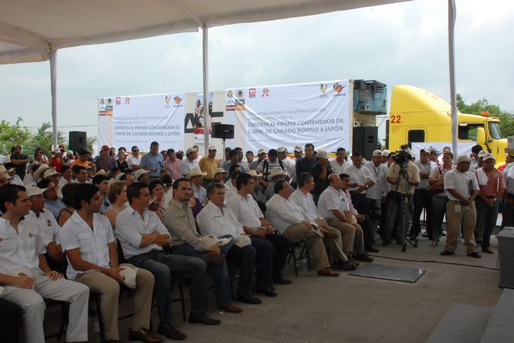 Veracruz será exportador seguro, pues tomarán medidas de higiene adecuadas para evitar la tuberculosis bovina.