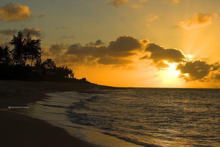 Final de tarde em Velzland  North shore - Oahu