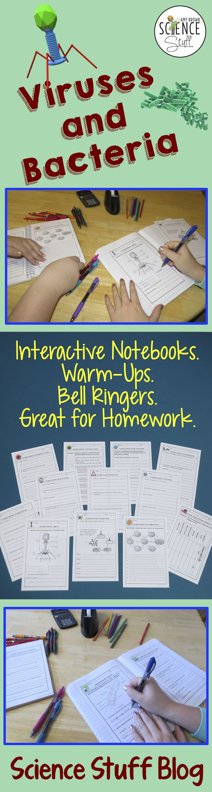Science Stuff Blog: Interactive notebook pages for viruses and bacteria
