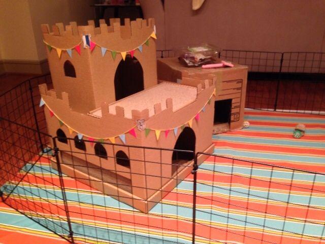 Cardboard Castle - BinkyBunny.com - House Rabbit Information Forum - BinkyBunny.com - BINKYBUNNY FORUMS - HABITATS AND TOYS