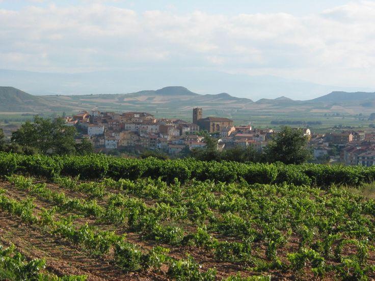 Vuelos baratos a Europa: enoturismo en La Rioja - http://revista.pricetravel.com.mx/vuelos-baratos/2015/05/16/vuelos-baratos-a-europa-enoturismo-en-la-rioja/