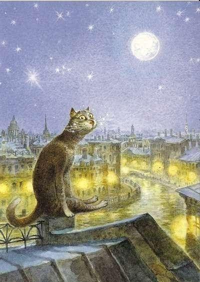 Кот | ВКонтакте