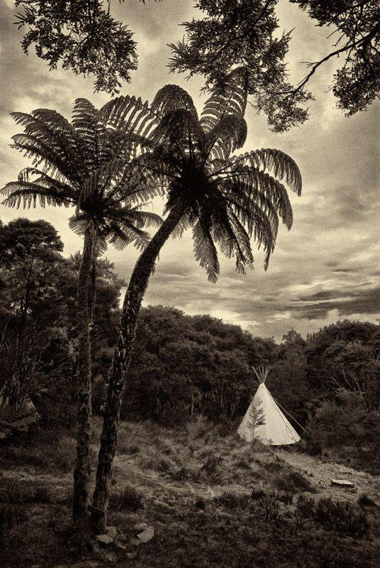 Eco living, Raglan, New Zealand
