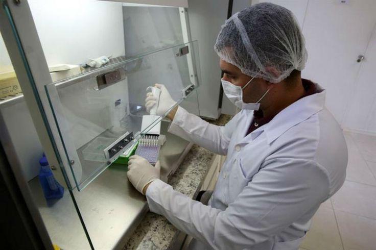 Artículo sobre los investigadores que están investigando Zika y la cura contra Zika.