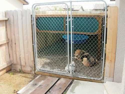 Website has tons of diy dog things like how to built dog kennels, toys, clothes, ramps, etc.