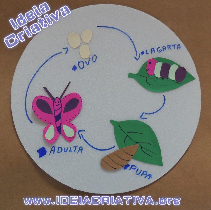 ciclo-de-vida-da-borboleta-plano-de-aula.jpg (1017×1015)