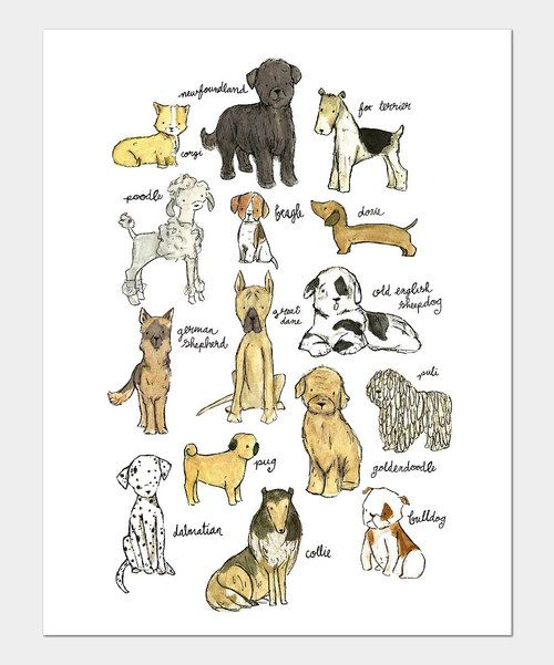 Puppy nursery wall art