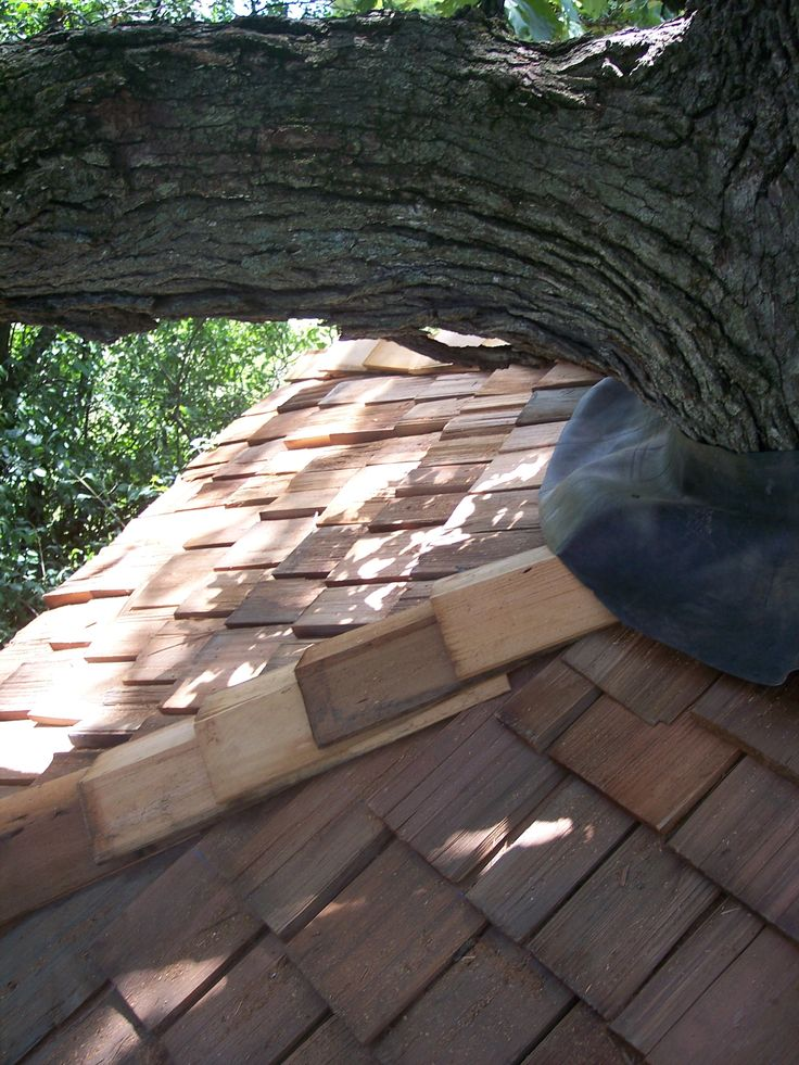 60 Best Images About Diy Tree House On Pinterest Rope