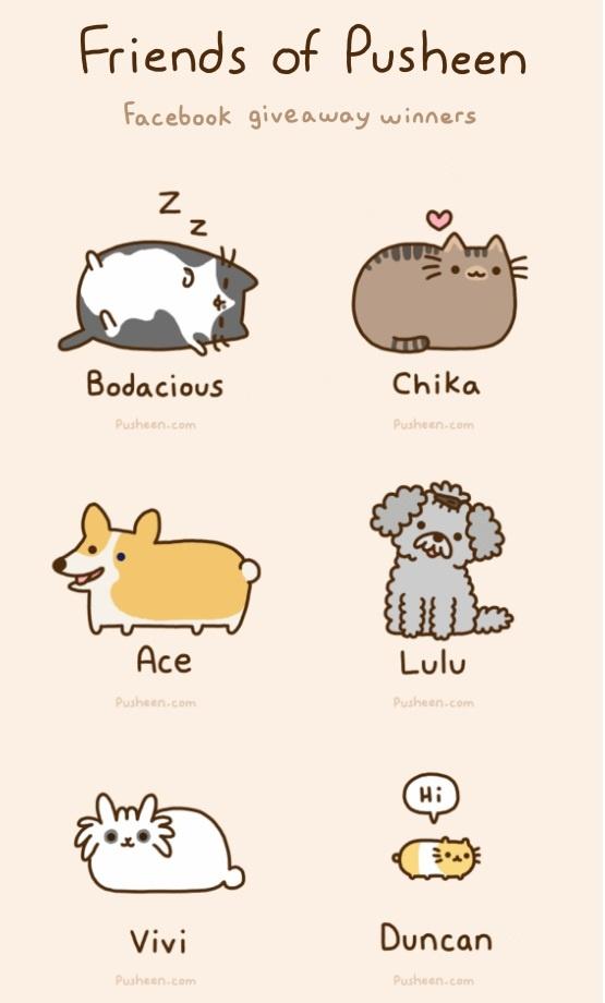 cute-cat-facebook-covers