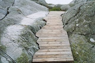 custom wooden path