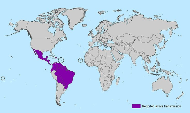 World map showing countries and territories with reported active transmission of Zika virus (as of February 1, 2016).