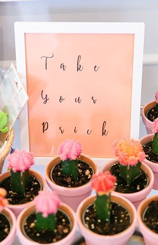 Fun & Playful Cactus Party | Inspired By This | Bloglovin'