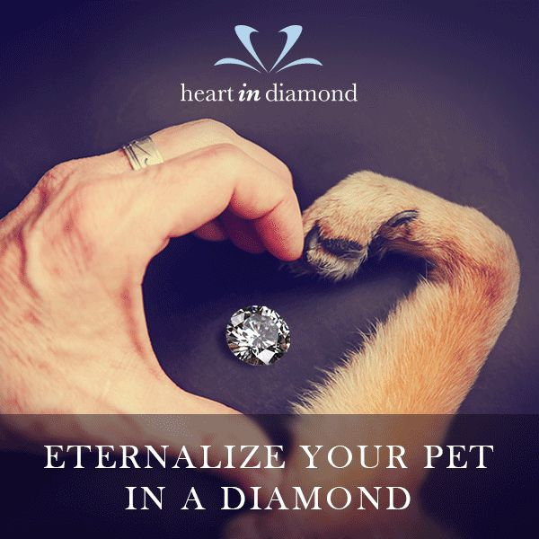 Pet ashes can be turned into diamonds - immortalise your pet forever!