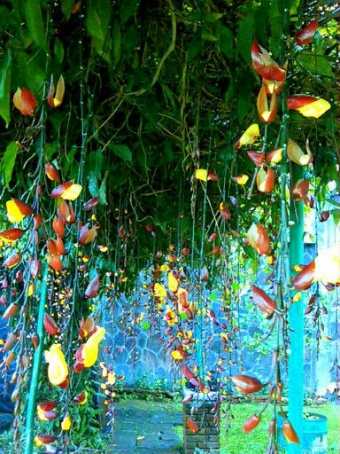 Flowers gate