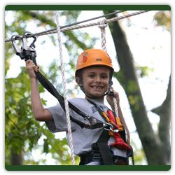 1000 Images About Treetop Adventure Park On Pinterest
