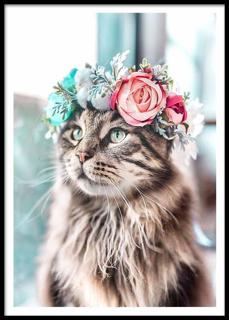 Katzen-Dame Poster  Böhmisches Katzenplakat in verschiedenen Größen ich berilyamac.co auch