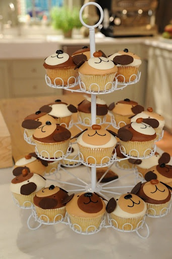Kate from Cake Power made these adorable puppy cupcakes. Learn how to make them here http://thefamilyroom.marthastewart.com/2011/04/19/how-to-make-puppy-cupcakes