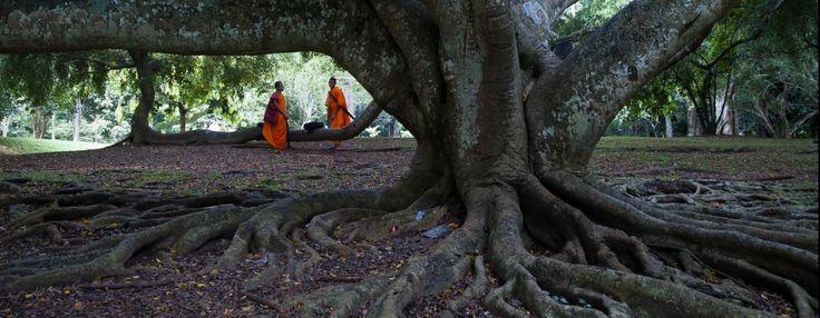 #Camboya www.estrellasdelviaje.com