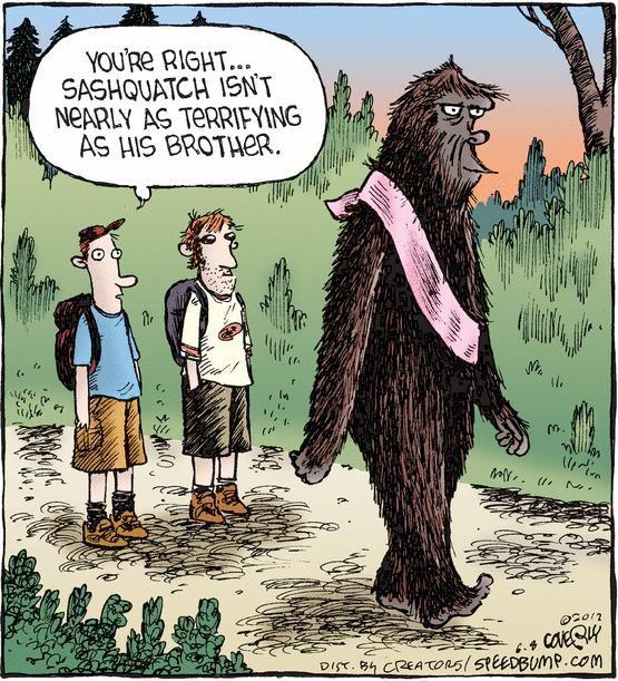 49 best images about Bigfoot Humor on Pinterest | Bigfoot ...Bigfoot Comic