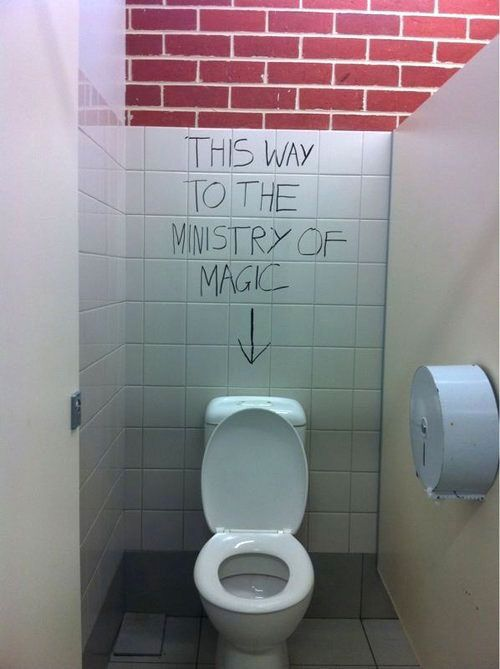 Just don't flush with Moaning Myrtle nearby...